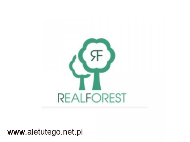 Realforest.pl - sklep z drewnianymi zegarkami